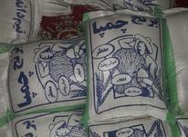 برنج محلی رودبار در شیپور-عکس کوچک