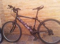 دوچرخه خوب  در شیپور-عکس کوچک