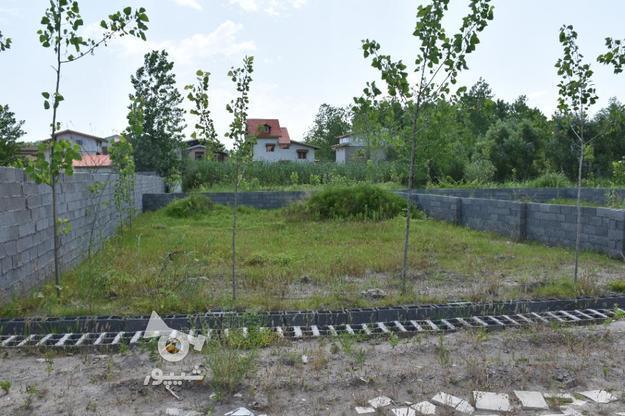زمین مسکونی 246 متر در زیباکنار سمت ساحل/منطقه آزاد در گروه خرید و فروش املاک در گیلان در شیپور-عکس1