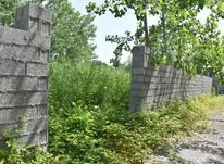 زمین مسکونی ۲۶۰ متر در زیباکنار/منطقه آزاد در شیپور-عکس کوچک
