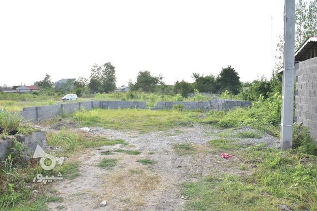 زمین مسکونی 286 متر در زیباکنار در گروه خرید و فروش املاک در گیلان در شیپور-عکس1