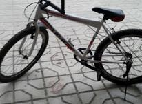 دوچرخه 26. در شیپور-عکس کوچک