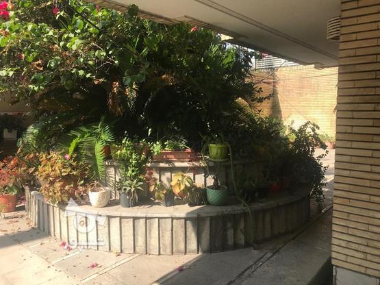 آپارتمان 120 متر در بابل در گروه خرید و فروش املاک در مازندران در شیپور-عکس6