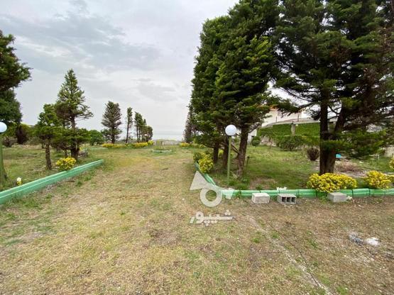 فروش زمین 3300 متر بابرتجاری پلاک اول دریا در گروه خرید و فروش املاک در مازندران در شیپور-عکس1