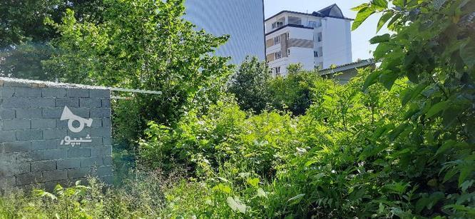 290 متر زمین با 16 متر ارتفاع ساخت در بخشی نوشهر در گروه خرید و فروش املاک در مازندران در شیپور-عکس4