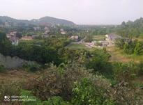 فروش زمین مسکونی 700 متر در رامسر در شیپور-عکس کوچک