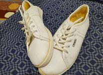 کفش اسپرت سایز 39 در شیپور-عکس کوچک