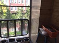 اجاره آپارتمان 110 متر در هروی در شیپور-عکس کوچک