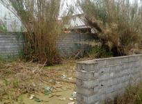 زمین مسکونی 200 متر در اجاکسر بابلسر در شیپور-عکس کوچک