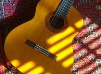 اموزش گیتار به صورت خصوصی در شیپور-عکس کوچک