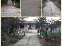فروش خانه باغی ویلای کیلومتر۳ بعداز گارد جنگل  در شیپور-عکس کوچک