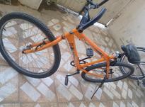 دوچرخه کوهستانی در شیپور-عکس کوچک