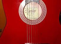 گیتار کارلوس نو  در شیپور-عکس کوچک