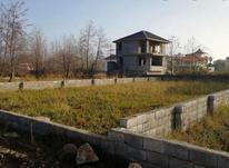 زمین مسکونی 258 متر در سرخرود در شیپور-عکس کوچک