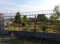 فروش زمین کشاورزی 1000 متر در سرخرود در شیپور-عکس کوچک