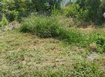 زمین مسکونی حوزه شهری ۲۶۵ متر  در شیپور-عکس کوچک