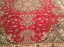 فرش دوازده متر در شیپور-عکس کوچک