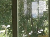 فروش زمین مسکونی 1300 متر در قزوین در شیپور-عکس کوچک