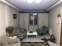 60متری قصرالدشت در شیپور-عکس کوچک