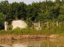 2زمین مسکونی سند دار ۱۱۰۰متری در کیا سرای لاهیجان در شیپور-عکس کوچک