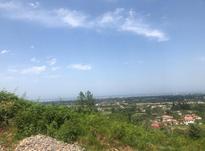 5000 متر زمین تنکابن سلیمان آباد در شیپور-عکس کوچک