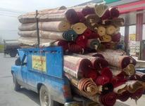 قالیشویی قیطران در شیپور-عکس کوچک