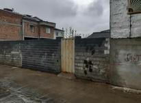 زمین مسکونی 150 متری  در طالبی بابلسر در شیپور-عکس کوچک
