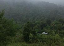 275 متر زمین شهرکی -قواره اول جنگل (رویان -دهکده چایباغ در شیپور-عکس کوچک