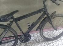 دوچرخه دنده ای نوجوان در شیپور-عکس کوچک