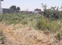 فروش زمین کشاورزی 300 متر جاده لاریم در شیپور-عکس کوچک