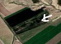 2 و نیم هکتار زمین زراعی برای کشت سیر به اجاره داده میشود در شیپور-عکس کوچک