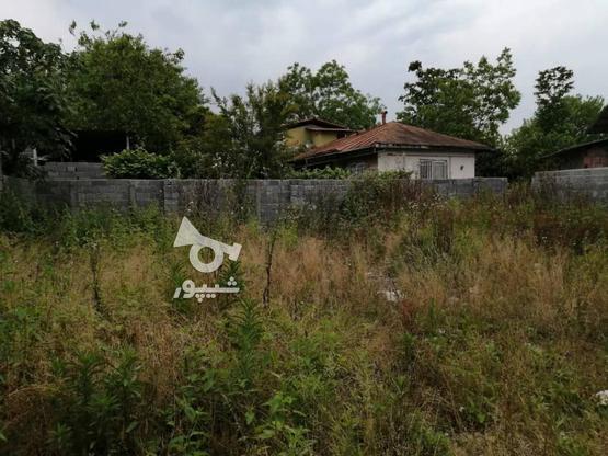 لتیگان---زمین مسکونی450متری---باجوازساخت در گروه خرید و فروش املاک در مازندران در شیپور-عکس1