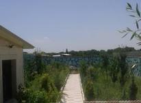 فروش زمین مسکونی 350 متر در شهریار در شیپور-عکس کوچک
