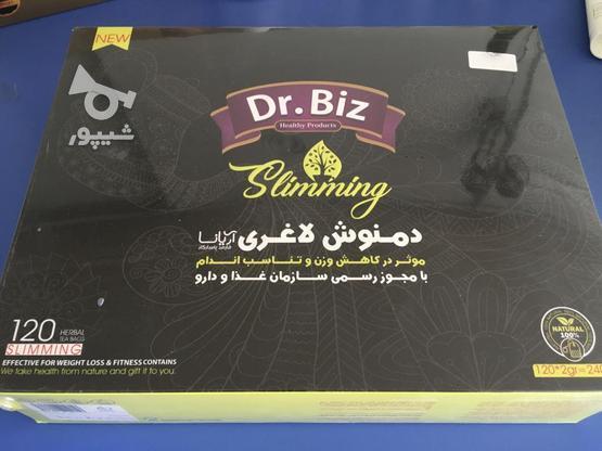 تی بگ های لاغری دکتر بیز در گروه خرید و فروش خدمات و کسب و کار در اصفهان در شیپور-عکس1