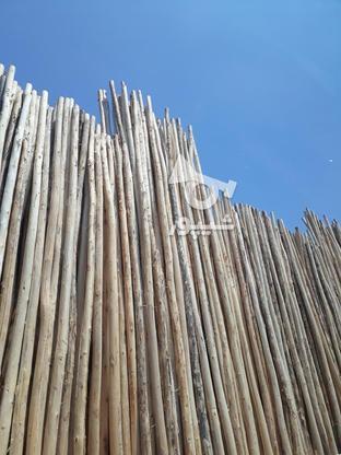 ،،چوب شمال،، در گروه خرید و فروش خدمات و کسب و کار در گیلان در شیپور-عکس1