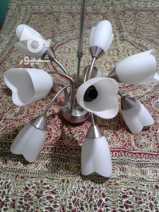 لوستر10 شاخه.مدل گل لاله در گروه خرید و فروش لوازم خانگی در مازندران در شیپور-عکس1