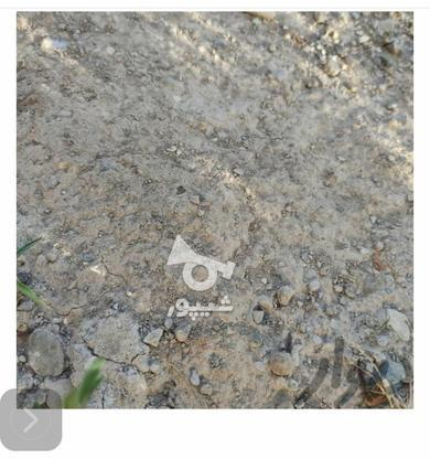 خریدار زمین سنددار در طالقانی و لمتر  در گروه خرید و فروش املاک در مازندران در شیپور-عکس1