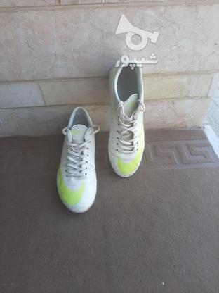 کفش فوتبال در گروه خرید و فروش ورزش فرهنگ فراغت در فارس در شیپور-عکس1