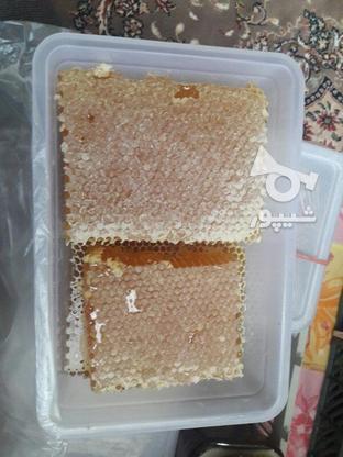 عسل طبیعی آذربایجان در گروه خرید و فروش خدمات و کسب و کار در البرز در شیپور-عکس1