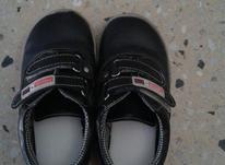 کفش پسرانه سایز28 در شیپور-عکس کوچک