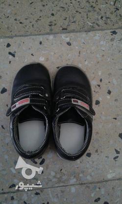 کفش پسرانه سایز28 در گروه خرید و فروش لوازم شخصی در لرستان در شیپور-عکس1