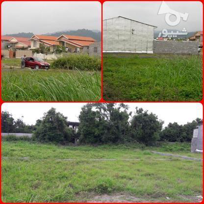 زمین زیر قیمت مسکونی 200 متر در نور در گروه خرید و فروش املاک در مازندران در شیپور-عکس1