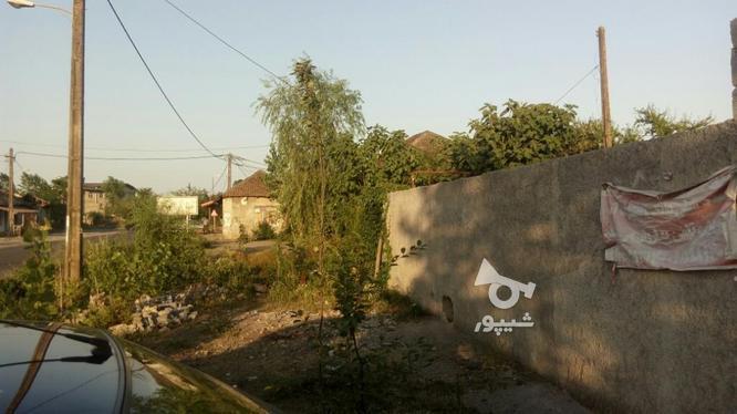 زمین با موقعیت تجاری400 متر قلعه در گروه خرید و فروش املاک در گیلان در شیپور-عکس1