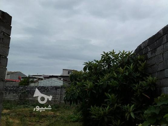 زمین مسکونی 275 متری دربلوار ذوالفقاری بابلسر در گروه خرید و فروش املاک در مازندران در شیپور-عکس1