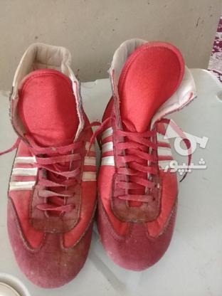 کفش سالم کشتی در گروه خرید و فروش ورزش فرهنگ فراغت در همدان در شیپور-عکس1