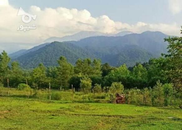 فروش زمین مسکونی 200 متر در تنکابن در گروه خرید و فروش املاک در مازندران در شیپور-عکس1