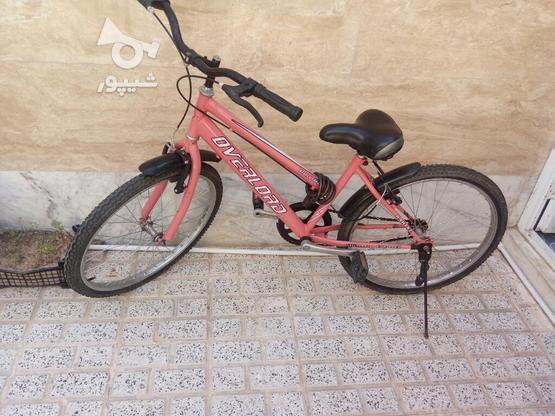 دوچرخه رنگ صورتی و تمیز در گروه خرید و فروش ورزش فرهنگ فراغت در خراسان رضوی در شیپور-عکس1