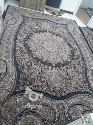 فرش بسیار تمیز 2سال ونیم کارکرده بدون سوختگی و پارگی   در گروه خرید و فروش لوازم خانگی در تهران در شیپور-عکس1