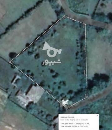 باغ سند دار مناسب ویلا سازی. چهار دیواری در گروه خرید و فروش املاک در گیلان در شیپور-عکس1