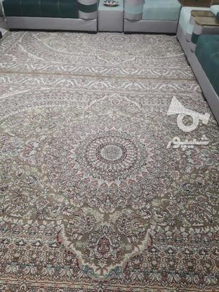 دو عدد فرش نه متری  در گروه خرید و فروش لوازم خانگی در تهران در شیپور-عکس1